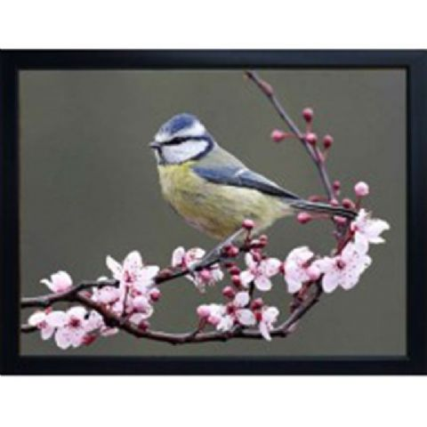 BLUE TIT 3D FRIDGE MAGNET